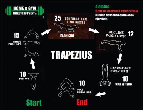 Trapecio 2016